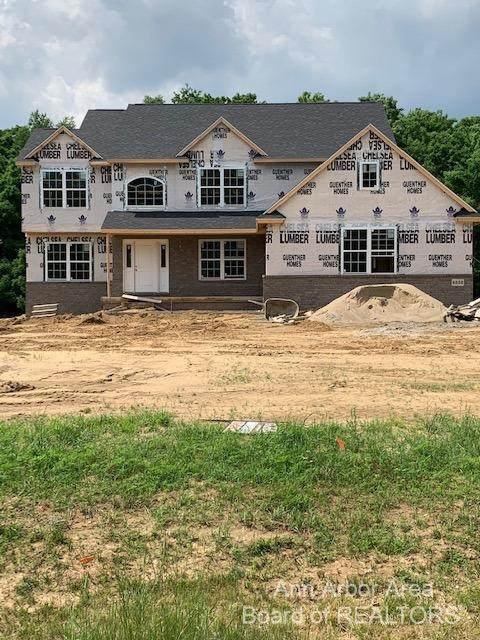 4522 Mckenna Drive, Raisin Township, MI 49221 (#543276470) :: Real Estate For A CAUSE