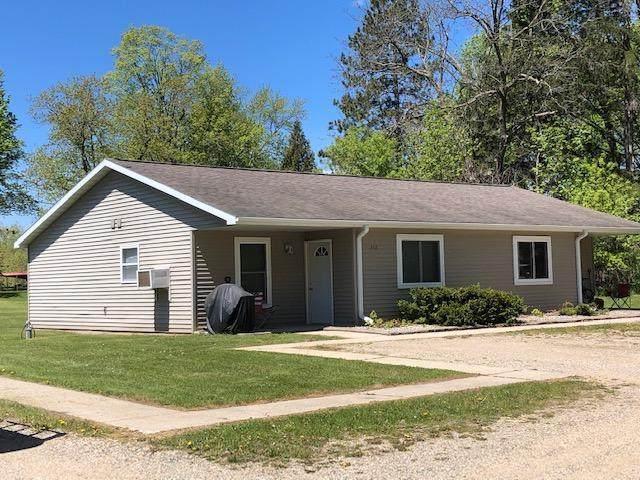376 S Fremont Street, Wheatland Twp, MI 49340 (#72021014748) :: The Alex Nugent Team   Real Estate One