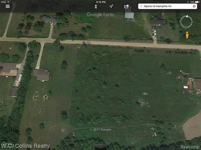 0 Alpine Road, Riley Twp, MI 48041 (#219051005) :: The Buckley Jolley Real Estate Team