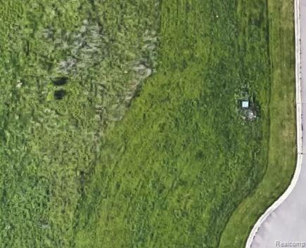 013 Vivian Trail, Flint Twp, MI 48532 (#218033854) :: RE/MAX Classic