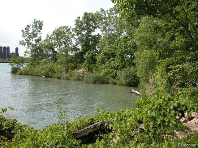 VACANT W River Road, Grosse Ile Twp, MI 48138 (#211014245) :: RE/MAX Classic