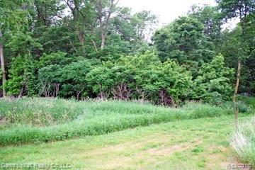 LOT 2 Sand Ridge Drive, Mckinley Twp, MI 48755 (#210045299) :: The Buckley Jolley Real Estate Team
