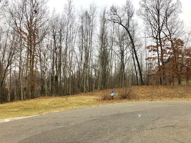 0 Marsh View Drive, Tyrone Twp, MI 48430 (#5021553690) :: The Buckley Jolley Real Estate Team