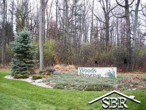 39 Woods Preserve - Photo 1