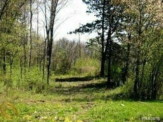 4577 Arline, Orchard Lake Village, MI 48323 (#215004441) :: The Buckley Jolley Real Estate Team