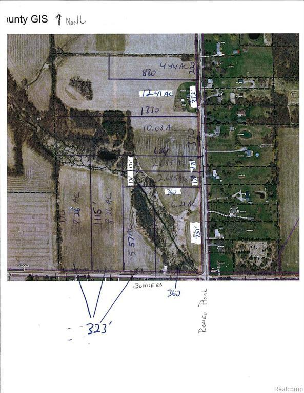 65625 Lot 5 Romeo Plank Road, Ray Twp, MI 48096 (#218114908) :: The Buckley Jolley Real Estate Team