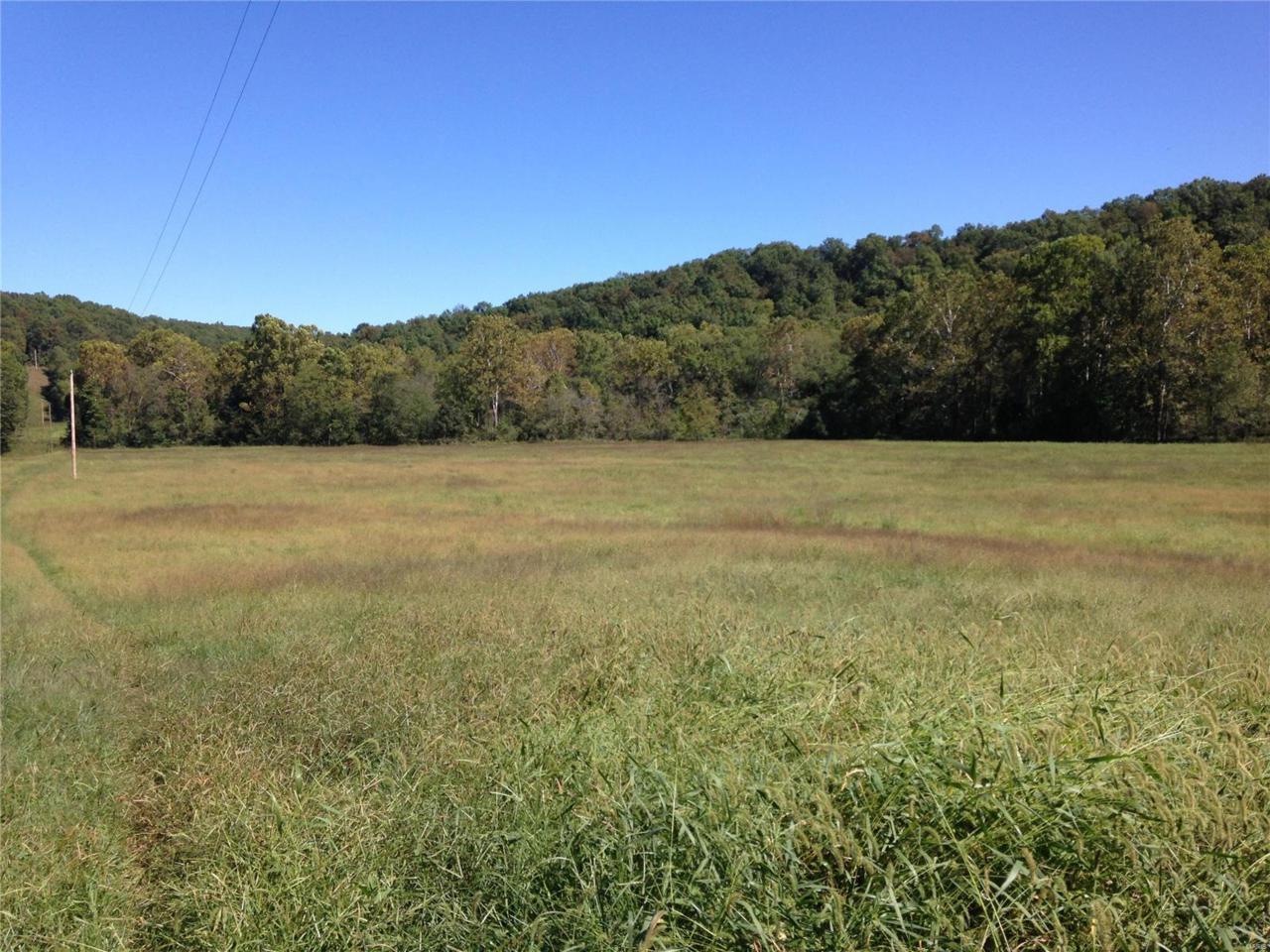 12455 County Road 261 - Photo 1