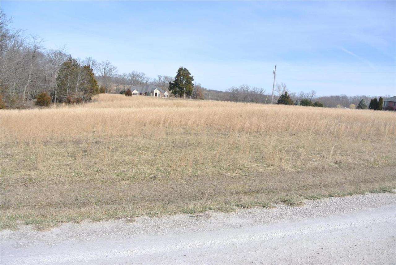 0 Lot 47 Tyler Branch Road - Photo 1