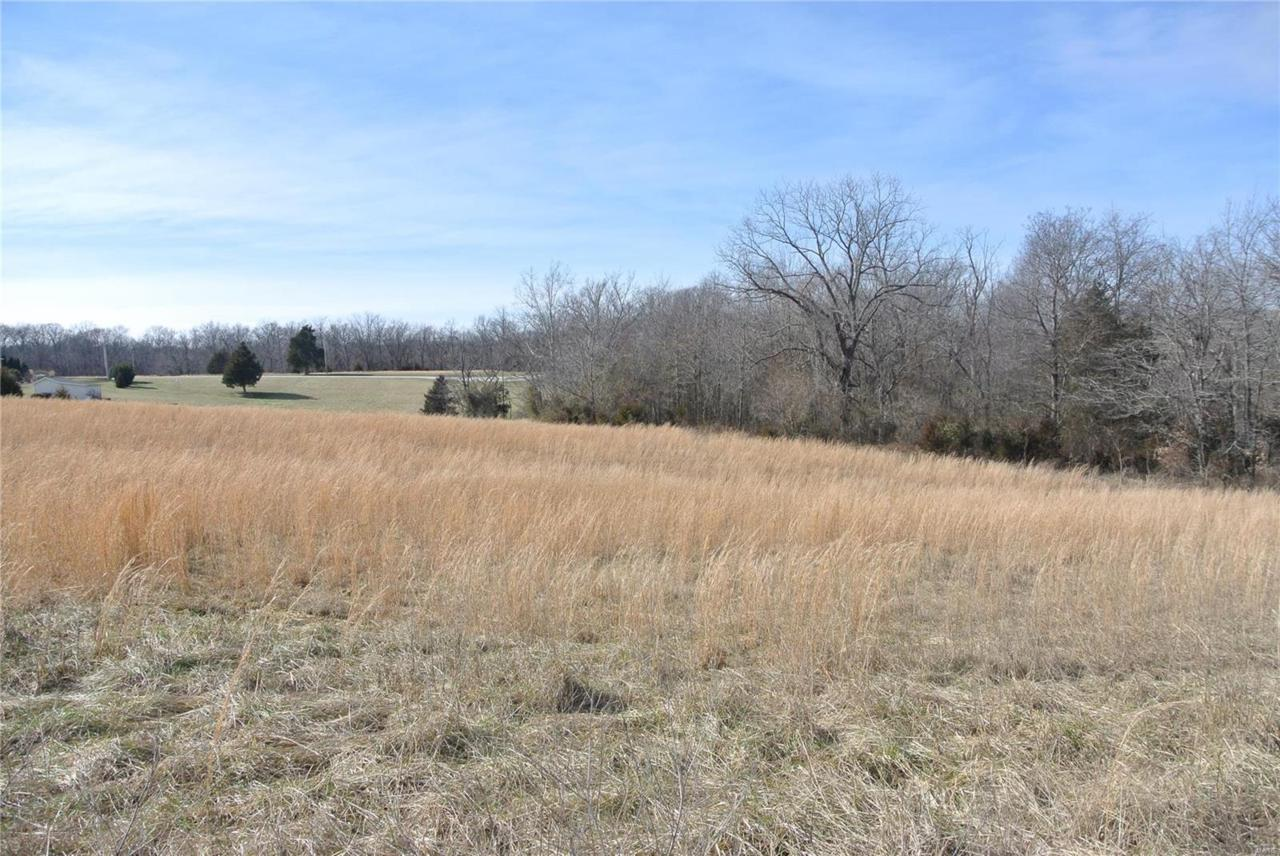 0 Lot 37 Woods View Lane - Photo 1