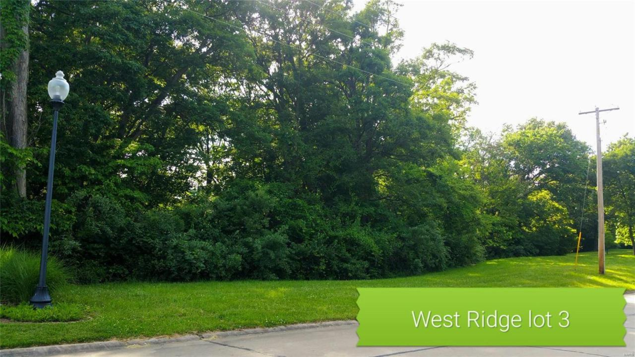 856 Grafton Hills Drive - Photo 1