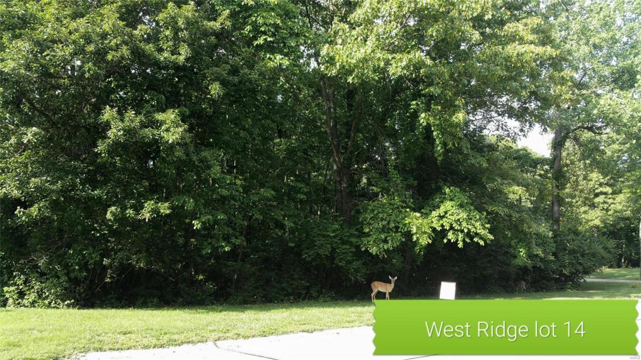 574 Grafton Hills Drive - Photo 1
