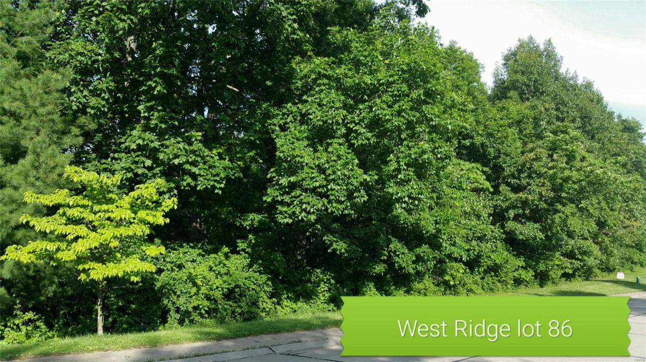 897 Grafton Hills Drive - Photo 1