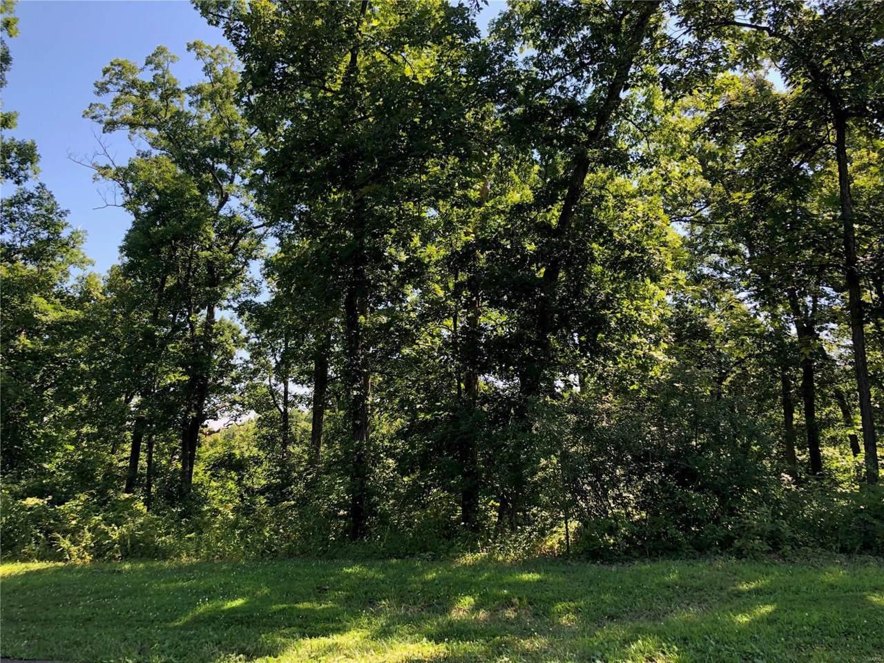 0 Sandy Woods Drive - Photo 1