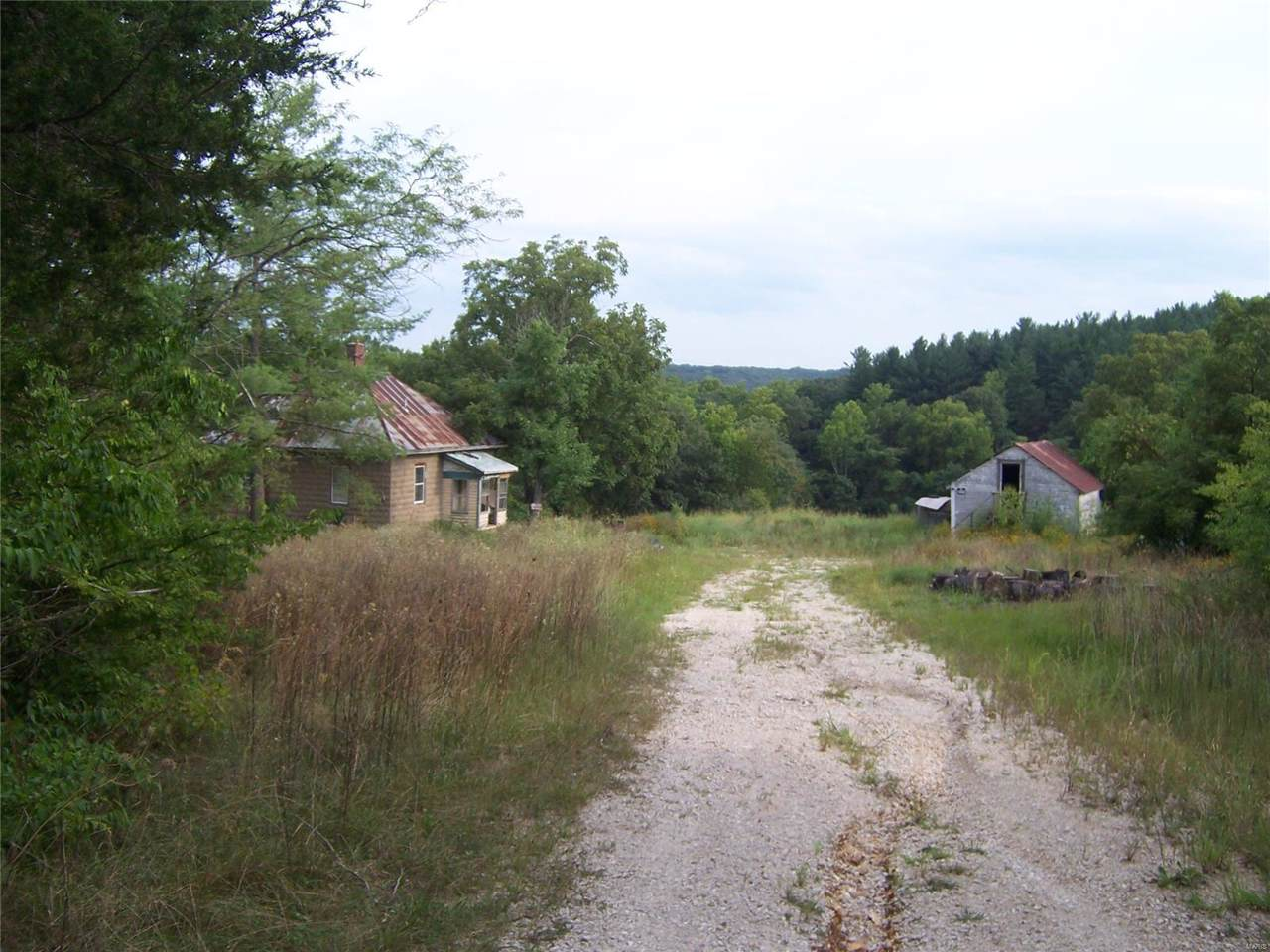 10287 Mapaville Hematite Road - Photo 1