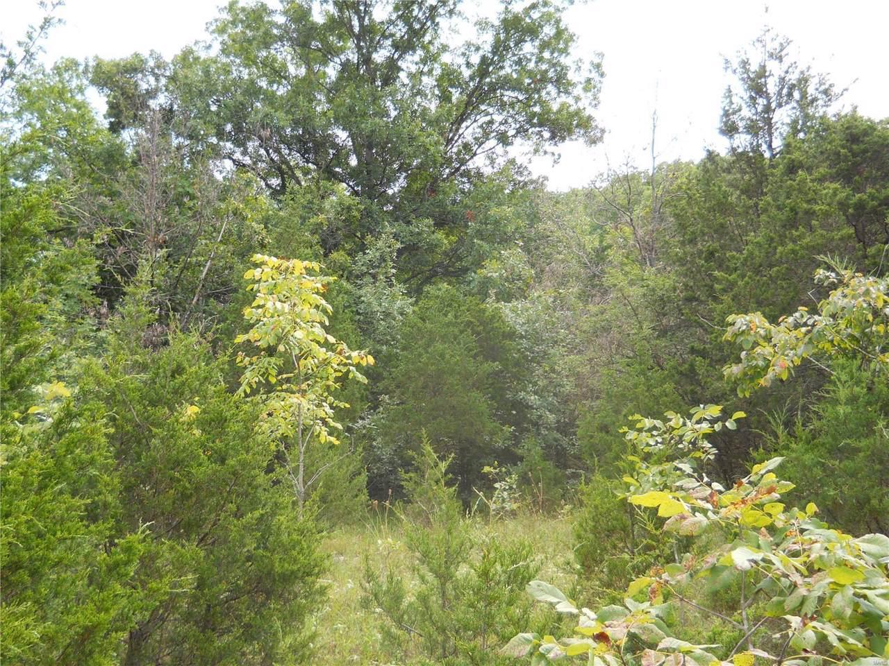 25 Bridle Trails Estates - Photo 1