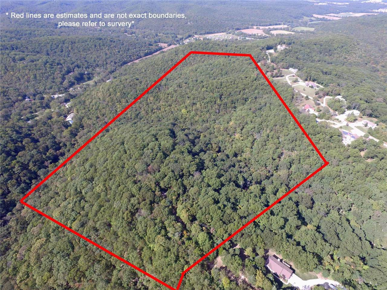 0 Bier Run (56+/- Acres) - Photo 1