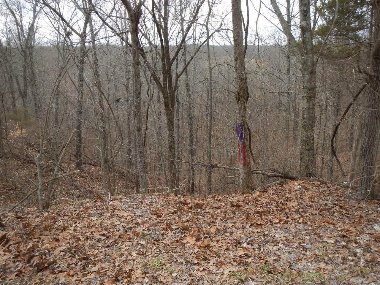 0 County Road 535 - Photo 1