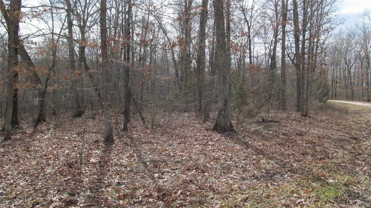 1 Lindberg Woods - Photo 1