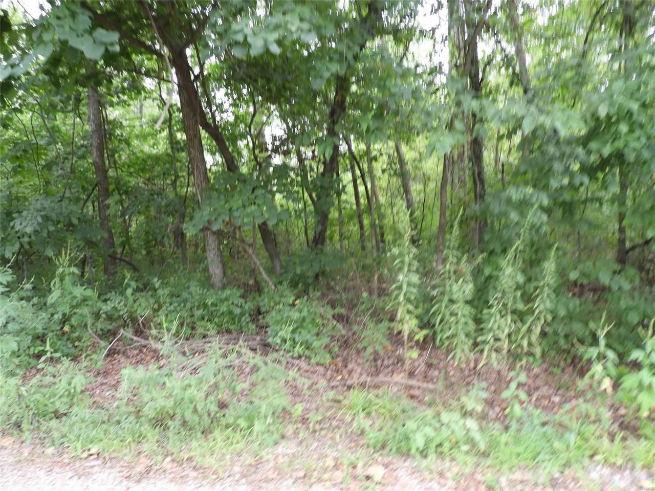 1259 St Louis Drive - Photo 1