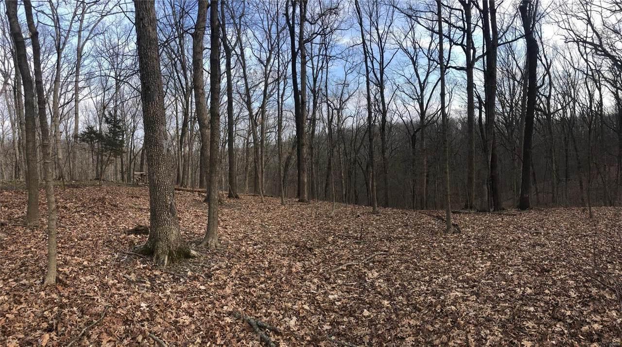 62 Wilderness Lane - Photo 1