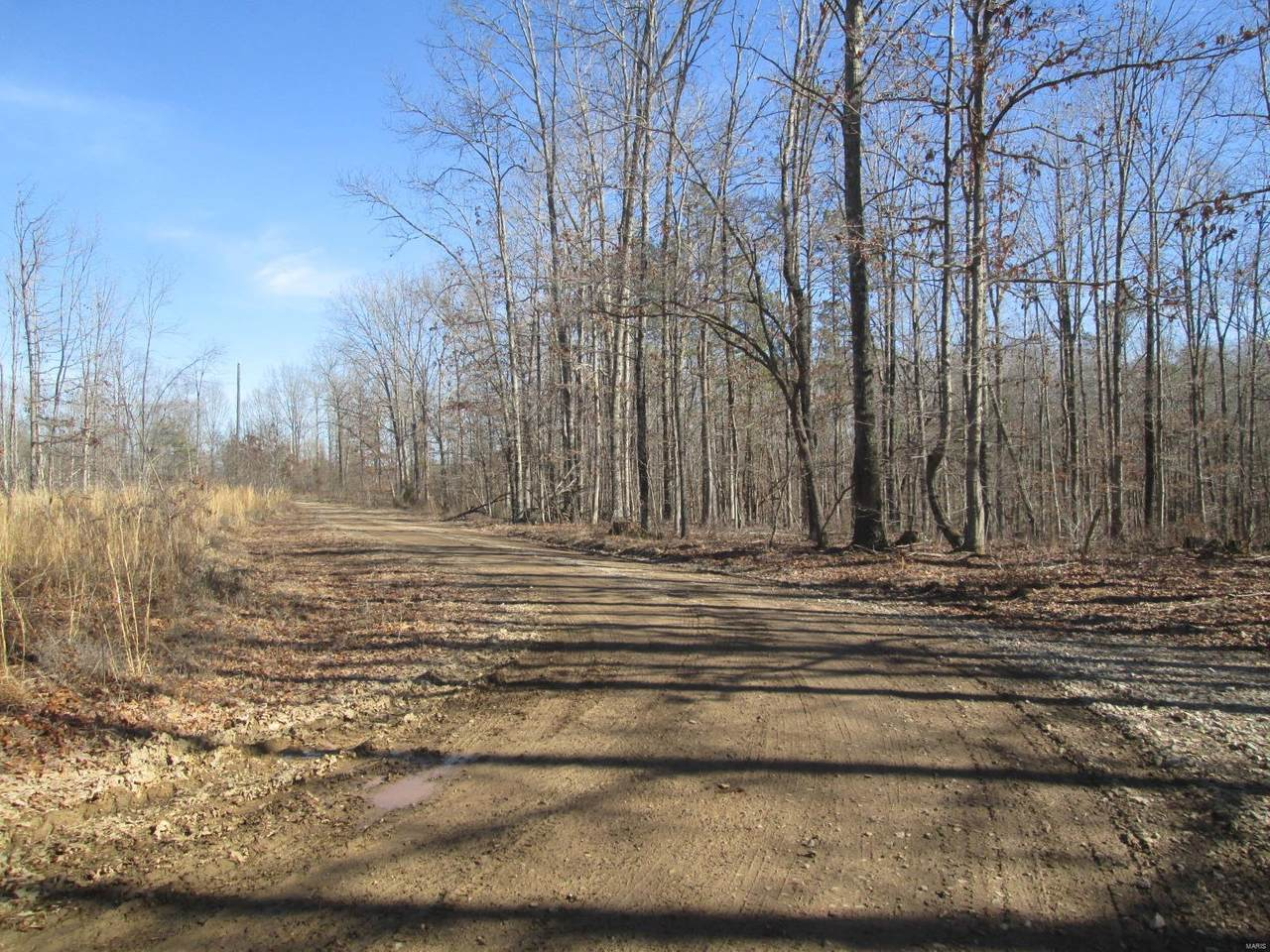 125 Ridge Crest Trail - Photo 1