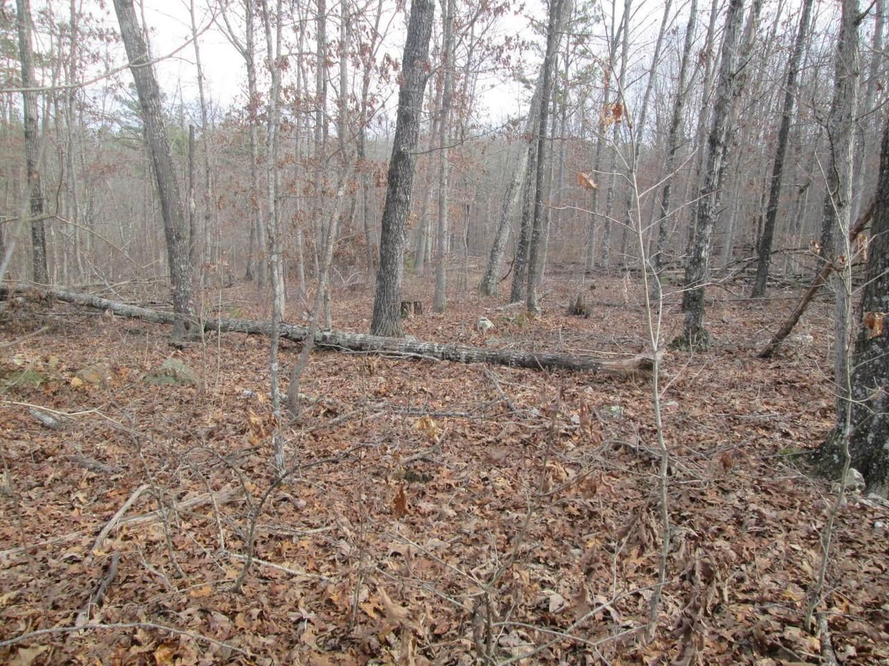 140 Sage Brush Trail - Photo 1