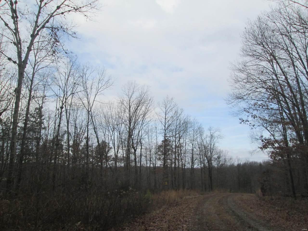 147 Golden Trail - Photo 1