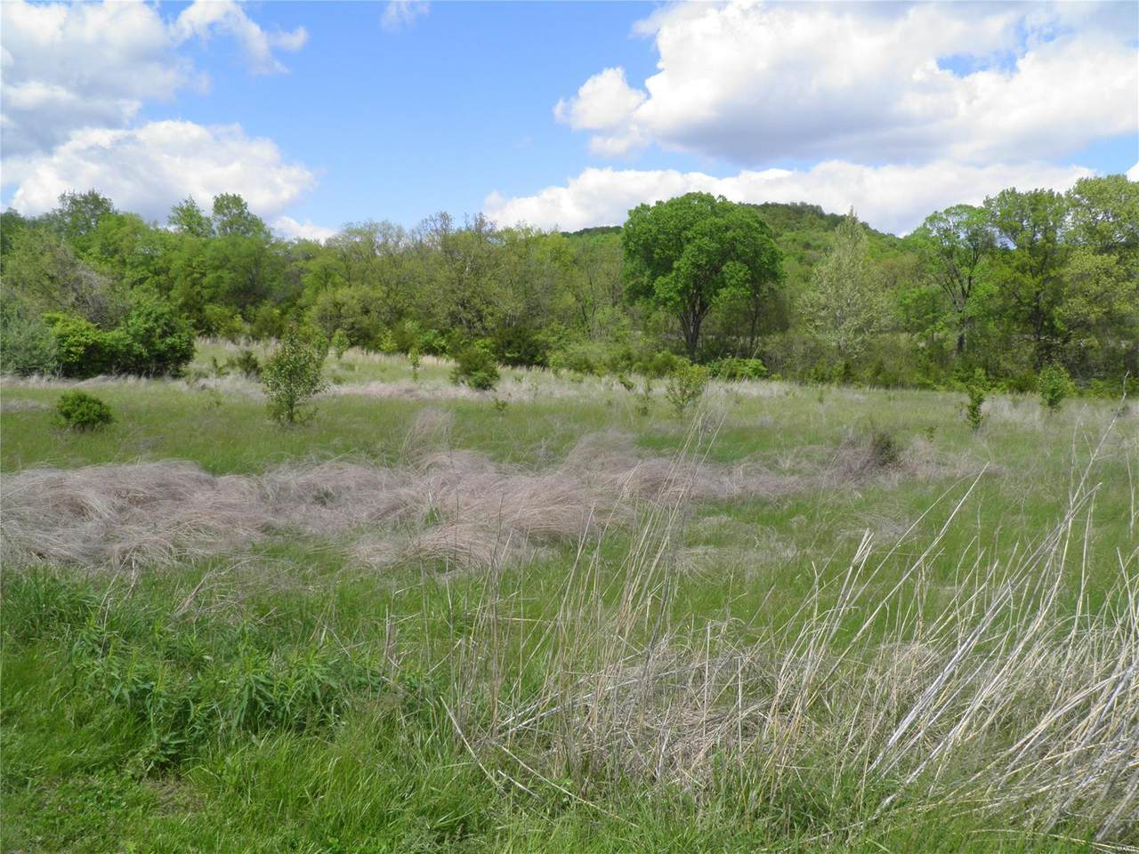 0 Lot 2 At Dry Fork Meadows - Photo 1