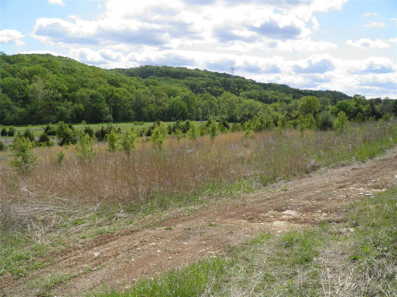 0 Lot 14 Of Dry Fork Meadows - Photo 1