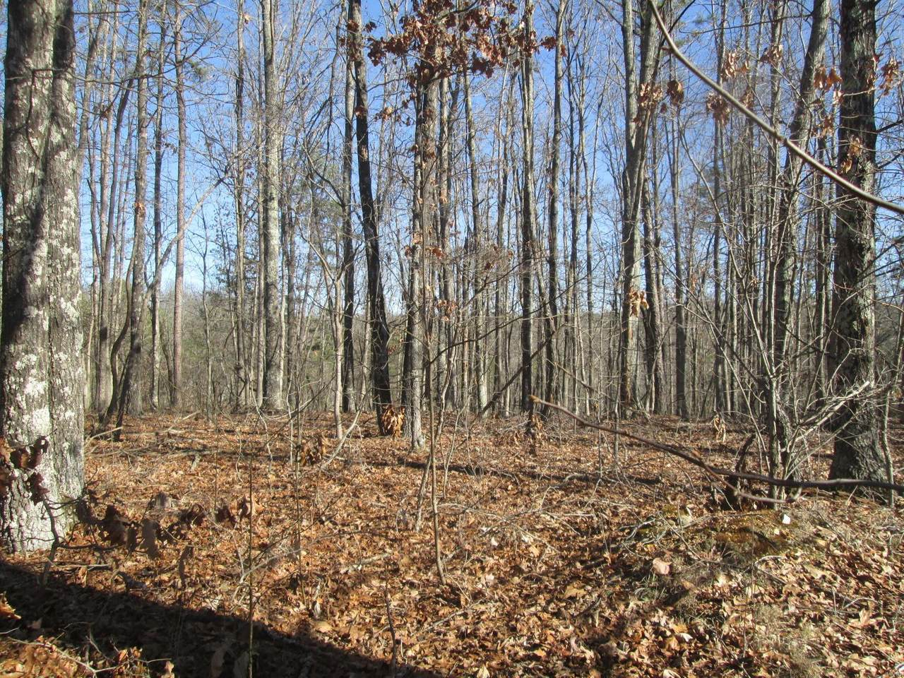 137 Ridge Crest Trail - Photo 1