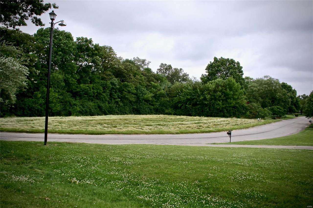 5309 Live Oak Drive - Photo 1