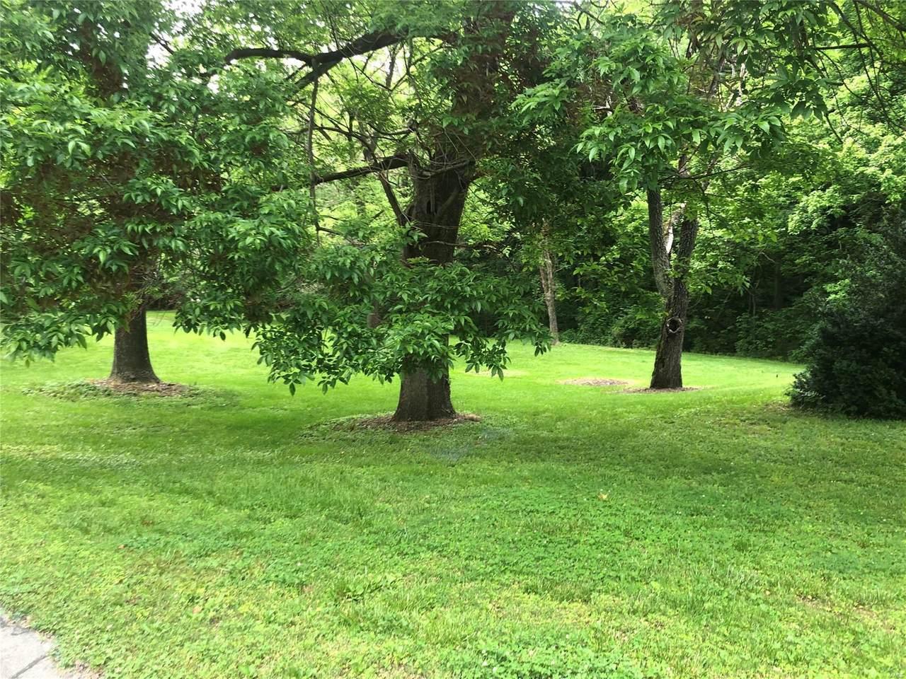 702 Babler Park Drive - Photo 1