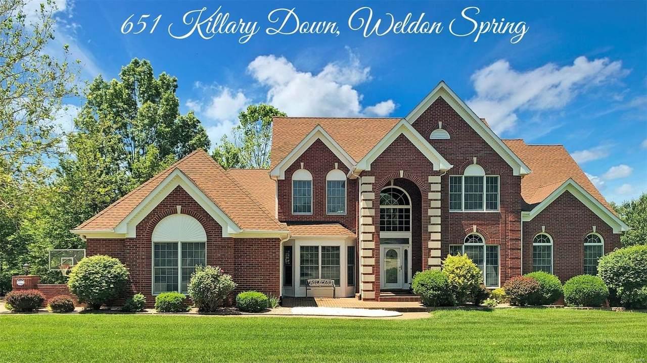 651 Killary Down - Photo 1