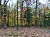 0 Boone Woods Trail - Photo 19
