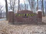 118 Forest Haven Drive - Photo 3