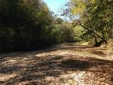 12455 County Road 261 - Photo 51