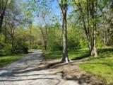 10696 Niggli Road - Photo 61
