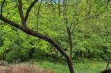 1574 Candish - Photo 62