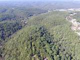 0 Bier Run (56+/- Acres) - Photo 11