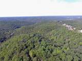 0 Bier Run (56+/- Acres) - Photo 14