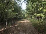 0 Bier Run (56+/- Acres) - Photo 3