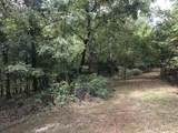 0 Bier Run (56+/- Acres) - Photo 6