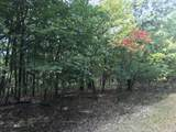 0 Bier Run (56+/- Acres) - Photo 7