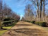 4 Apple Tree Lane - Photo 2