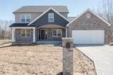 3 Timber Wolf Valley/Sawgrass - Photo 2
