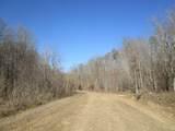 122 Big Tree Trail - Photo 1