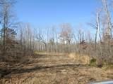 127 Big Tree Trail - Photo 1