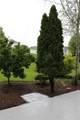 3016 Cambridge Pointe Dr - Photo 8