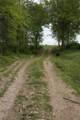 1 Cold Run Creek Road - Photo 17