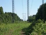 17114 Chapman T Trail - Photo 11